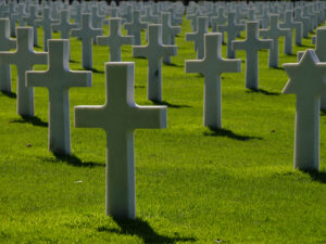 Kirkegård grønt græs hvide kors